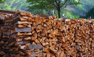 buchenholz-zum-raeuchern
